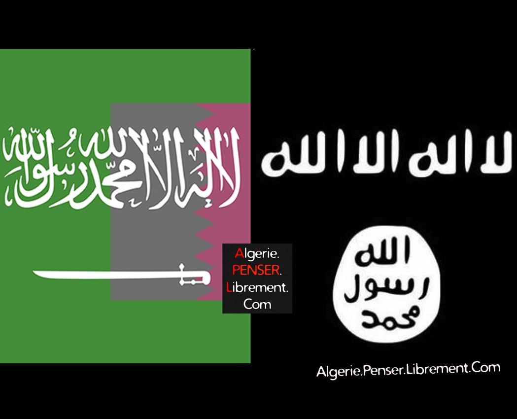 Photo of Soutien au terrorisme : l'Arabie saoudite se blanchit sur le dos du Qatar